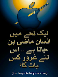 Urdu Lovely Quotes 17