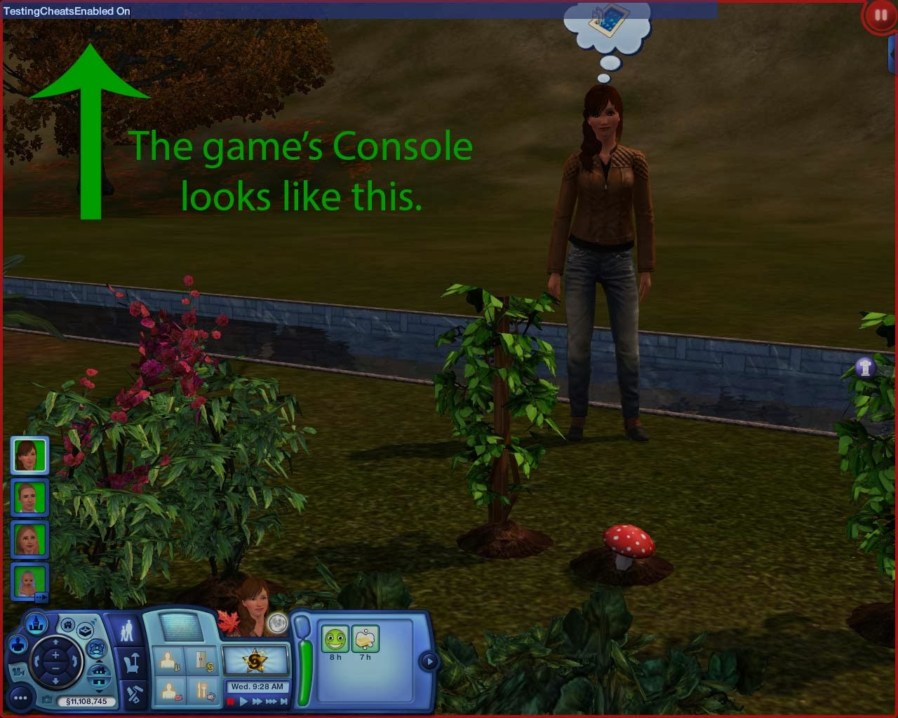Summer's Little Sims 3 Garden: The Sims 3: Cheat Codes and How to