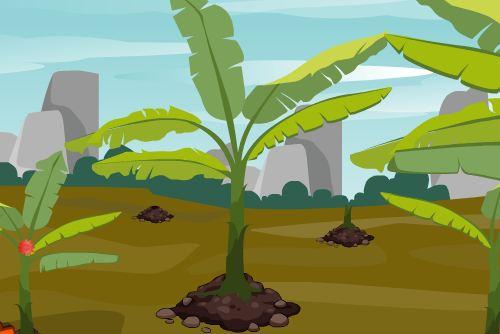 ZoozooGames Banana Grove …