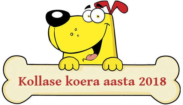 Kollase koera aasta