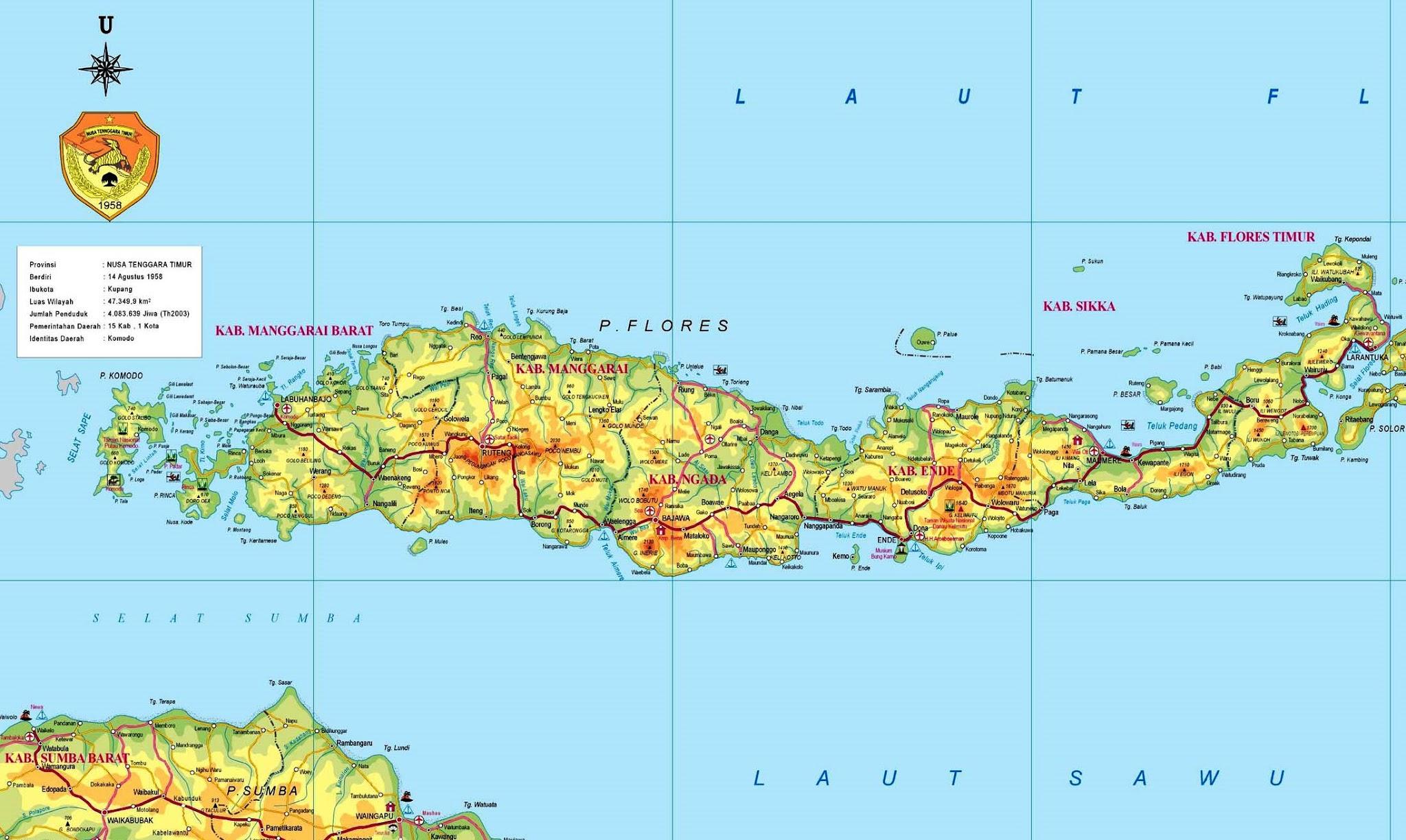 Peta Kota Pulau Flores Gambar Sketsa Bali