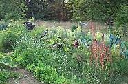 garden at Pragtree farm