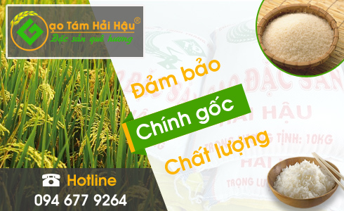 Đại lý cung cấp gạo ngon Hải Hậu – Bán buôn, bán sỉ, bán lẻ