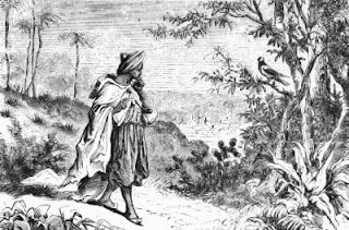 Legenda apie kavos atradimą. Omaras
