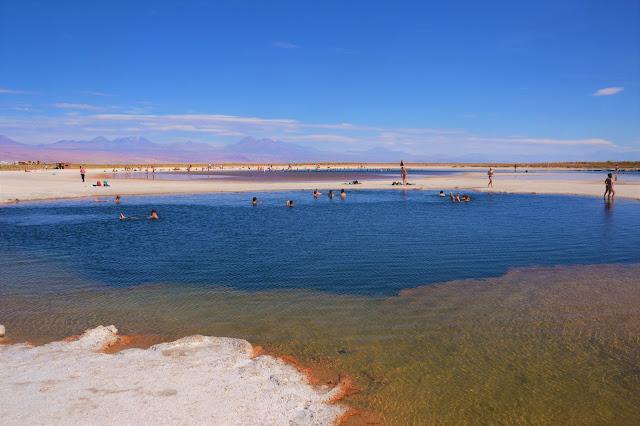 O contraste de cores impressiona na Laguna Cejar