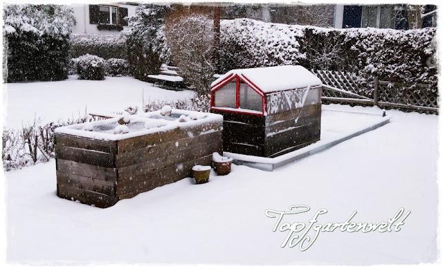 Hochbeet, überdachtes Hochbeet im Winter
