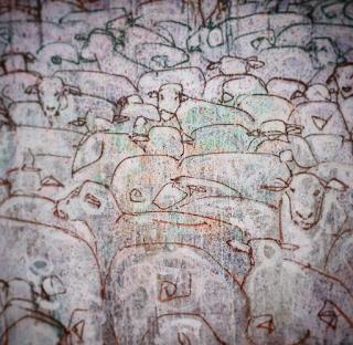 Graffiti Rebaño painting. Toma tu camino, walking your way #rebaño en la #pared #wall #graffiti #painting ##wall #decision #despertar #tomandoelpulso #free #libertad #ovejas #paisajes del primer mundo #firstworld landscapes #conciencia #conciencious