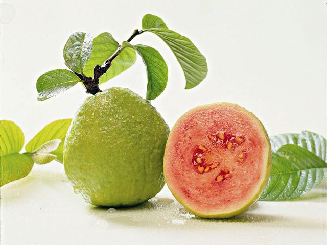 Manfaat Jambu biji untuk kesehatan