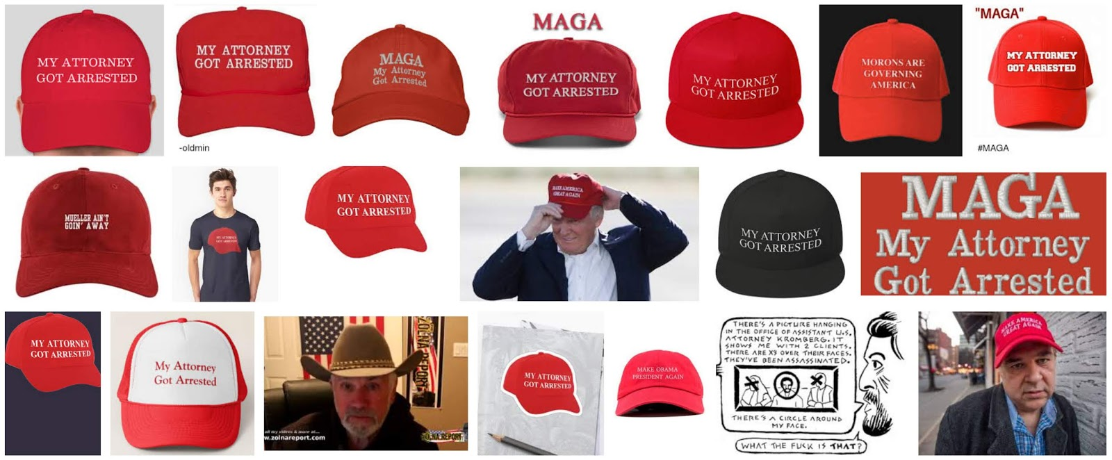 Althouse I M Seeing This Satirical Maga Hat
