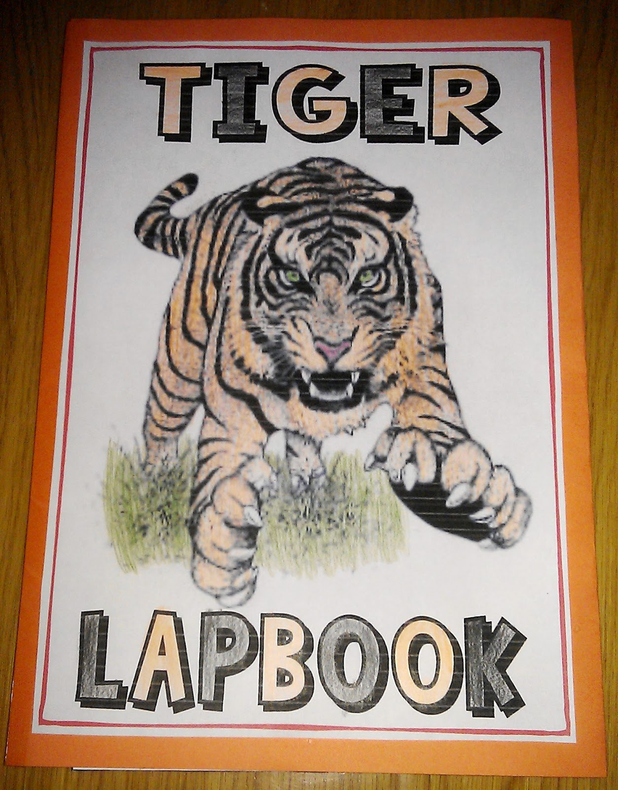 Iman S Home School Tiger Lapbook