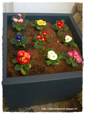 Pflanzkübel oder Blumenkübel