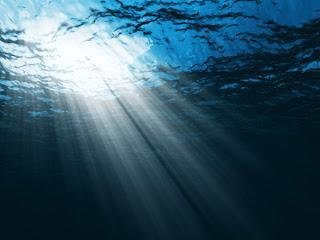 Save The Ocean Vampirii Energetici Si Donatorii Casei