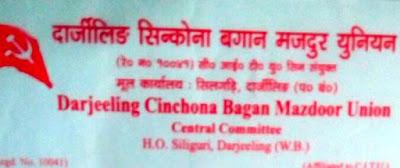 Darjeeling Cinchona Bagan Mazdoor union