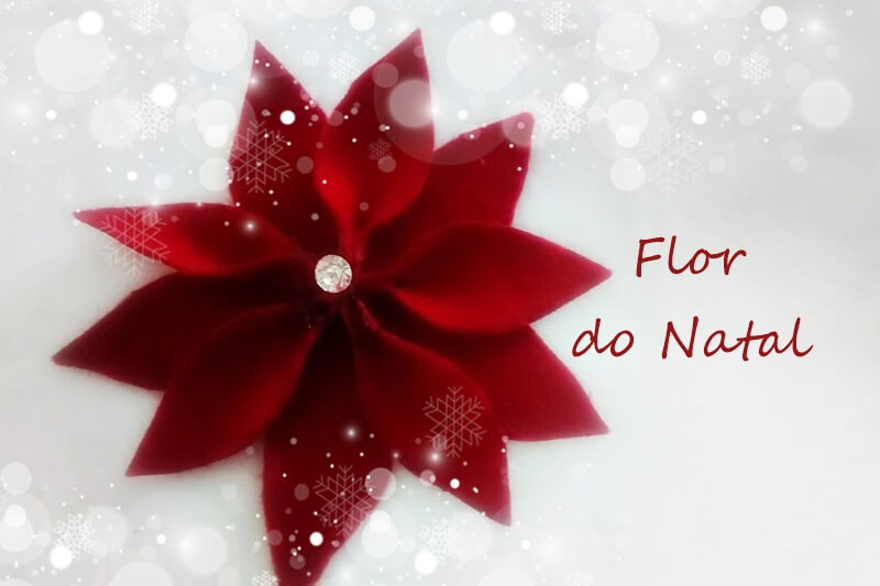 DIY A tradicional flor do natal