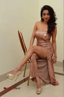 Actress Heena Panchal Pictures in Long Dress at Thikka Audio Launch  0175.JPG
