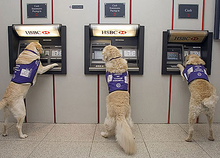 bank of america atm withdrawal limit reset
