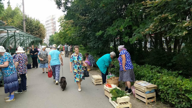 Дары осени в Новочебоксарске ост. магазин Каблучок на www.zzblog.ru