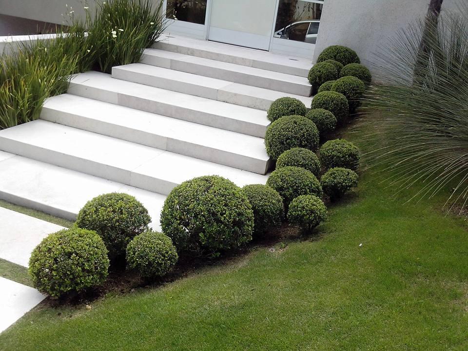 Eco flora jardinagem paisagismo e manuten o 15 for Paisagismo e jardinagem