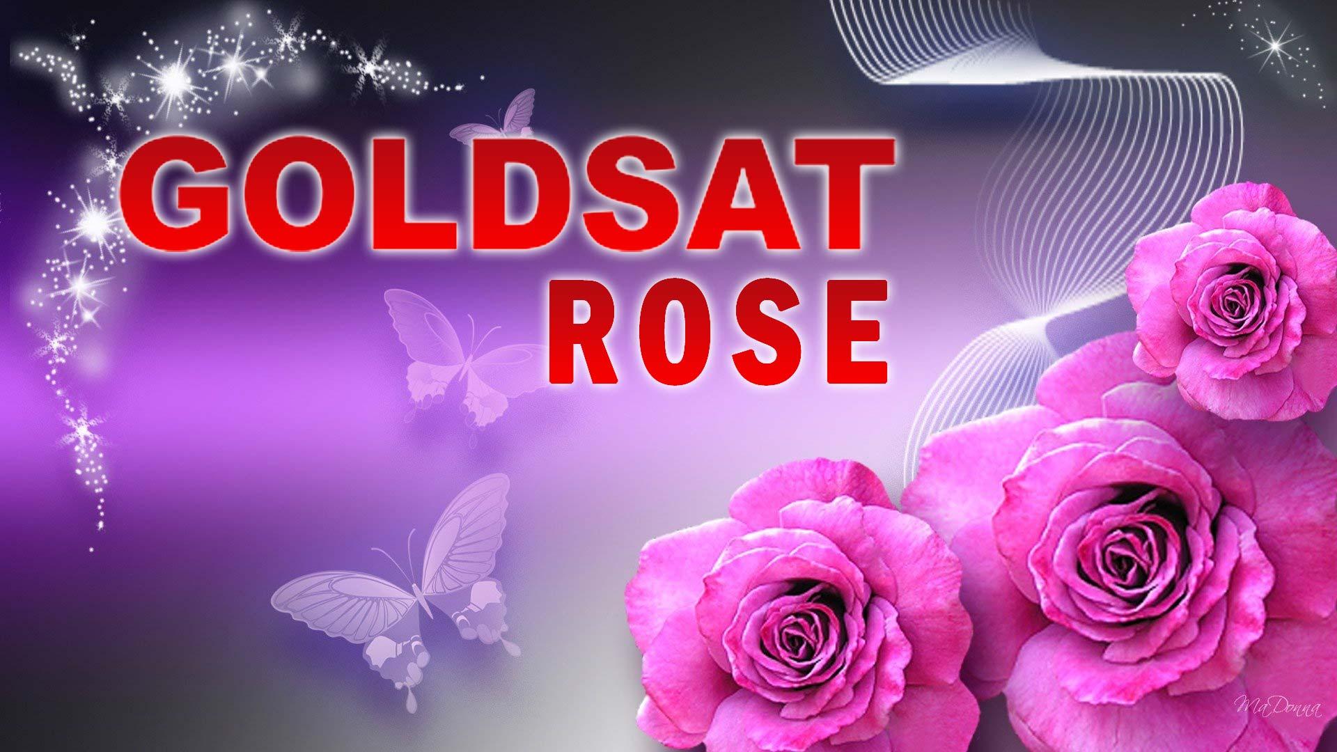 Download Firmware Receiver Goldsat Rose Guoxin SW GX6605S Terbaru