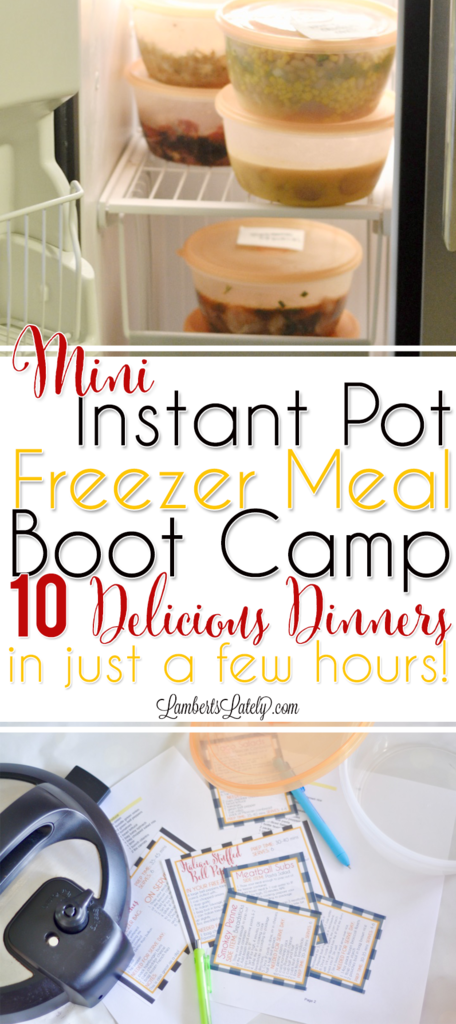 Instant Pot Freezer Meals || Mini Freezer Meal Boot Camp || Printable Labels || Electric Pressure Cooker || Easy Recipes || Simple Dinners || Food || Ground Beef || Chicken || Pressure Cooking