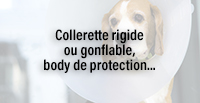 Collerette rigide ou gonflable, body de protection...