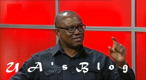 How I Inherited $170 Million from My Parents – Peter Obi