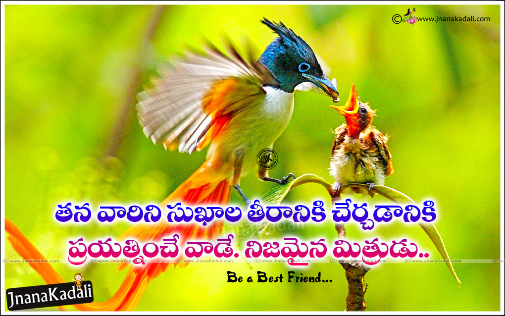 Fabulous Heart Touching Friendship Messages Telugu Quotes Brainysms Personalised Birthday Cards Bromeletsinfo