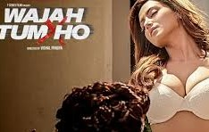 Wajah Tum Ho 2016 Hindi Movie Watch Online