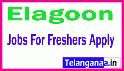 Elagoon Recruitment Jobs For Freshers Apply