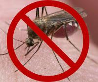 Cara ampuh usir nyamuk
