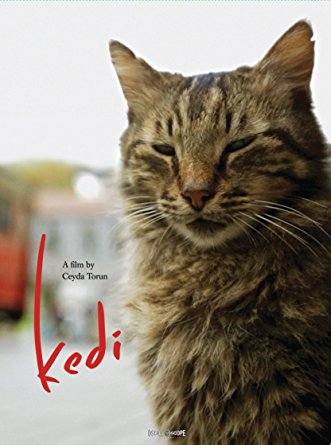 Kedi, directed by Ceyda Torun