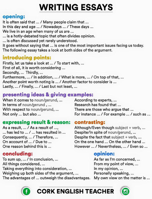 My School Essay In English How To Write My College Essay Reflective Essay On High School also Thesis Statements For Essays Guest Service Agent Resume Food Service Resume Objective Sociology  Short English Essays