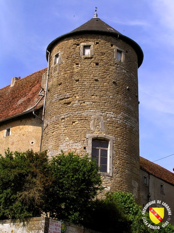 MANONVILLE (54) - Château-fort