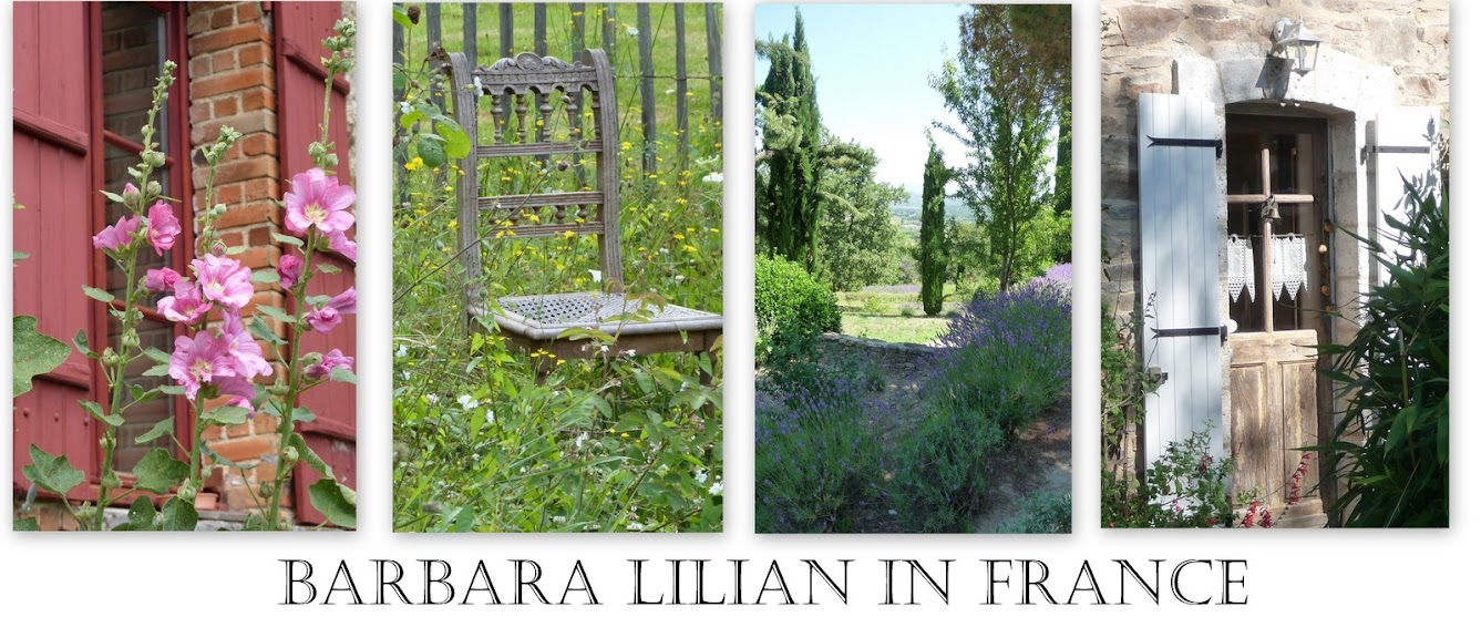 Barbara - Lilian - in - France.