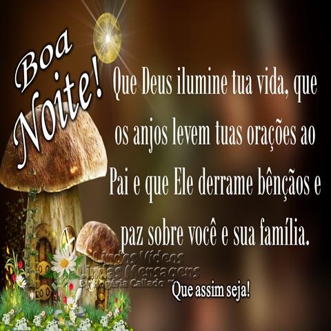 Que Deus ilumine tua noite,  que os anjos levem tuas orações ao Pai  e que Ele derrame bênçãos e paz  sobre você e sua família.  Que assim seja! Boa noite
