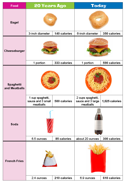 Best Food Portion Scale