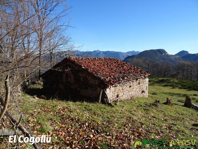 Cabaña en el Cogollu