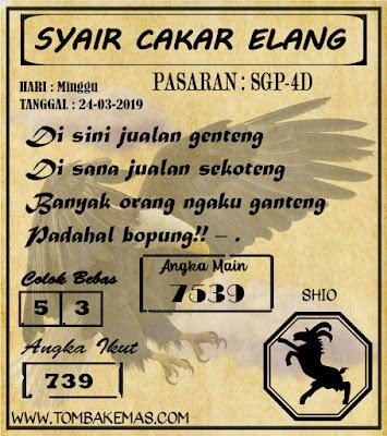 SYAIR SINGAPORE, 24-03-2019