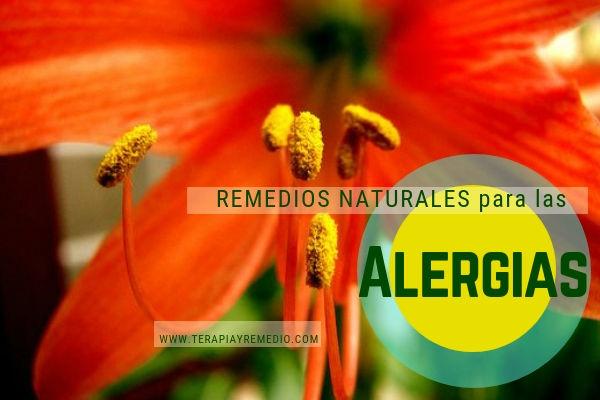 remedios naturales para combatir las alergias nasales , de la piel, etc.
