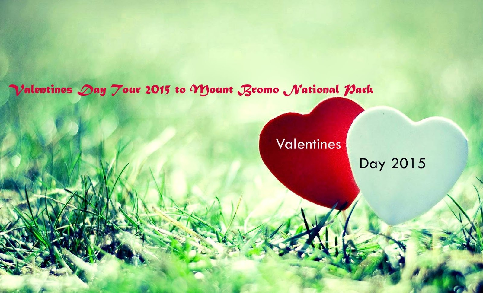 Valentines Day Tour to Mount Bromo National Park