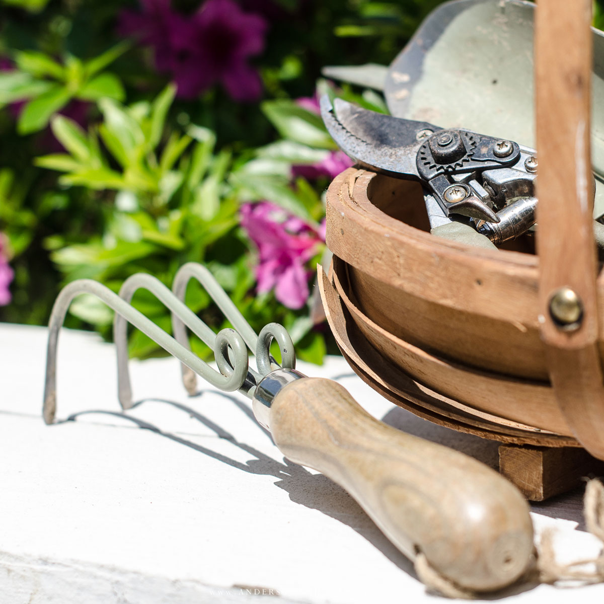 Must Have Hand Tools for Any Gardener