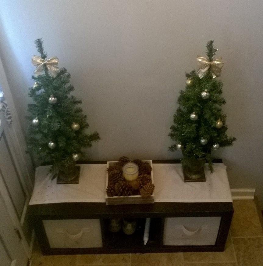 My Really Real Reality Christmas House