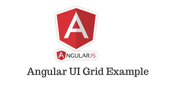 Angular Grid Example