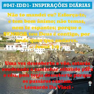 047-IDD1- Ideia do Dia 1