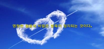 인생명언♡감동글