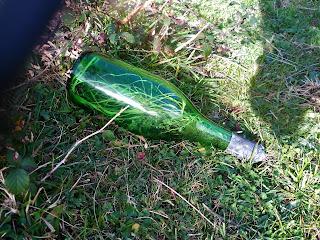 La vida en una botella