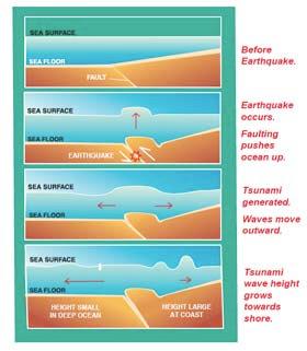 NO ORDINARY GIRL !: How do tsunamis work?
