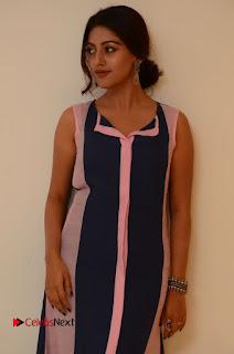 Actress Anu Emmanuel Pictures in Long Dress at Majnu Audio Success Meet 0017