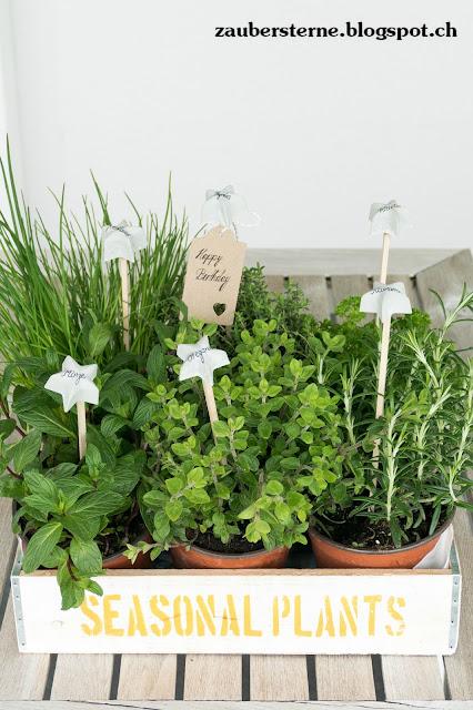 Betonsterne, Geschenkidee, Gartengeschenk, Kräutergarten, Kräuterhochbeet