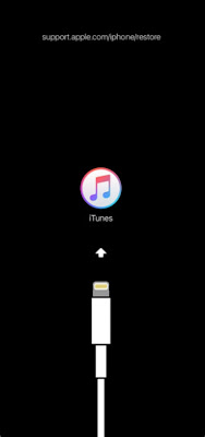 حل مشكلة support.apple.com/iphone/restore